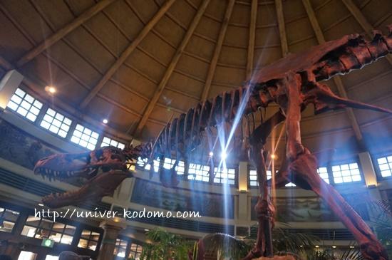 USJディスカバリーレストラン(恐竜アジアン系) 食事クチコミ